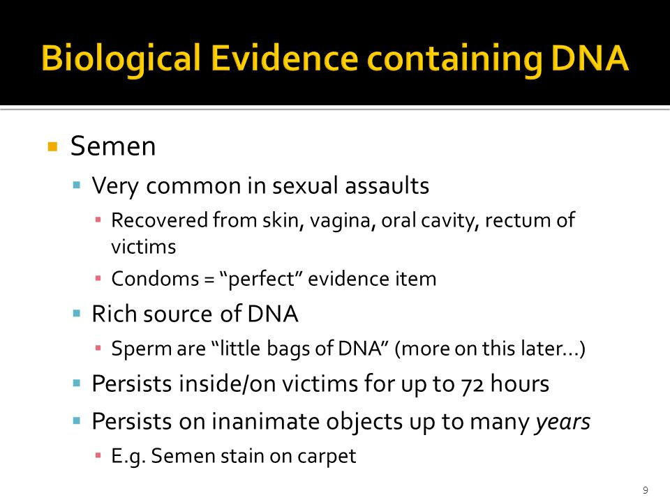 Semen Very common in sexual assaults Recovered from skin, vagina, oral cavity, rectum of victims Condoms = perfect evidence item Rich source of DNA Sperm are little bags of DNA (more on this later…) Persists inside/on victims for up to 72 hours Persists on inanimate objects up to many years E.g.
