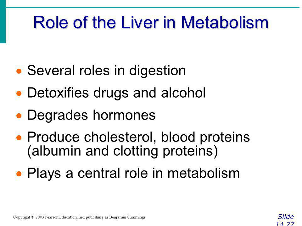 Role of the Liver in Metabolism Slide 14.77 Copyright © 2003 Pearson Education, Inc. publishing as Benjamin Cummings Several roles in digestion Detoxi