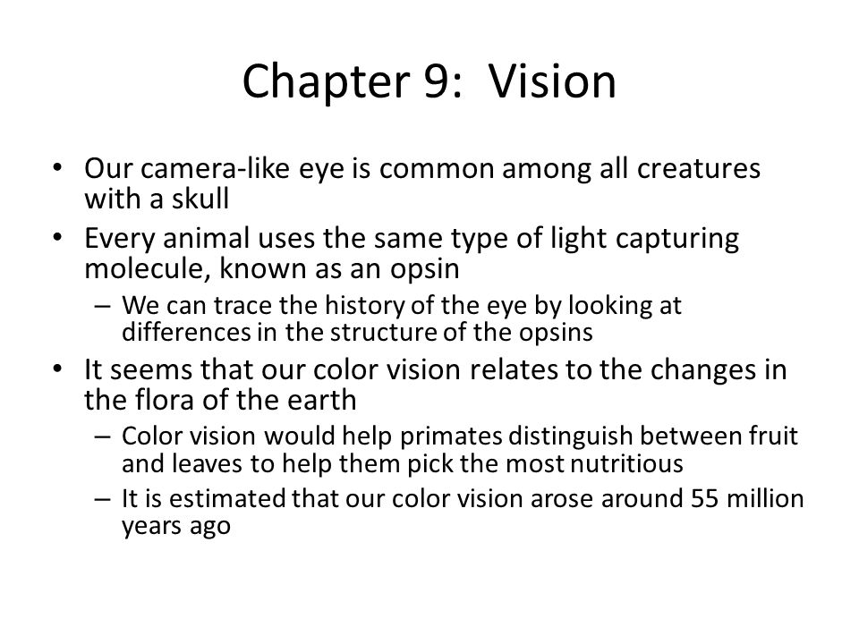 Chapter 9: Vision Our camera-like eye is common among all creatures with a skull Every animal uses the same type of light capturing molecule, known as an opsin – We can trace the history of the eye by looking at differences in the structure of the opsins It seems that our color vision relates to the changes in the flora of the earth – Color vision would help primates distinguish between fruit and leaves to help them pick the most nutritious – It is estimated that our color vision arose around 55 million years ago