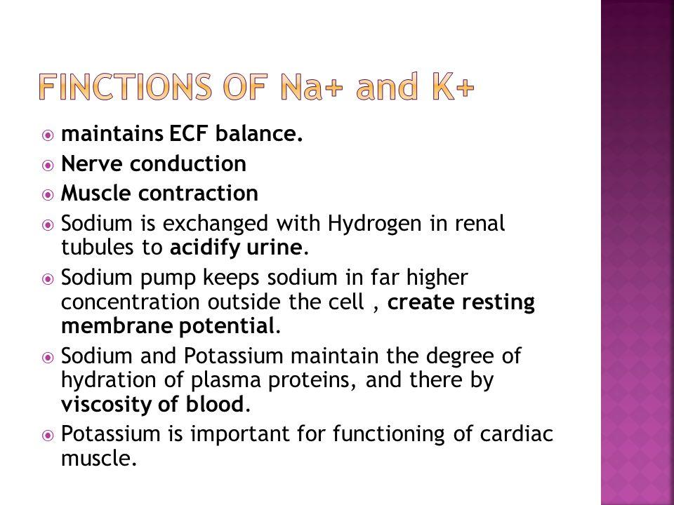 maintains ECF balance.