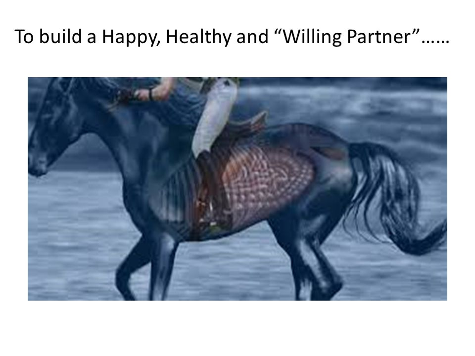 To build a Happy, Healthy and Willing Partner……