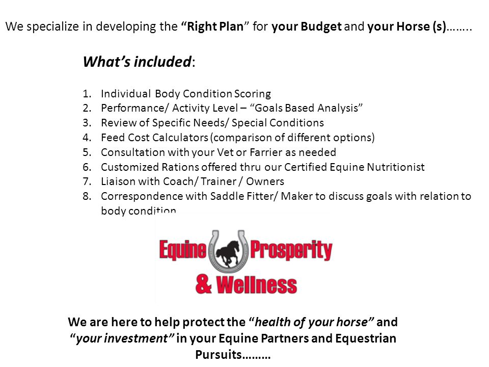 We specialize in developing the Right Plan for your Budget and your Horse (s)…….. Whats included: 1.Individual Body Condition Scoring 2.Performance/ A