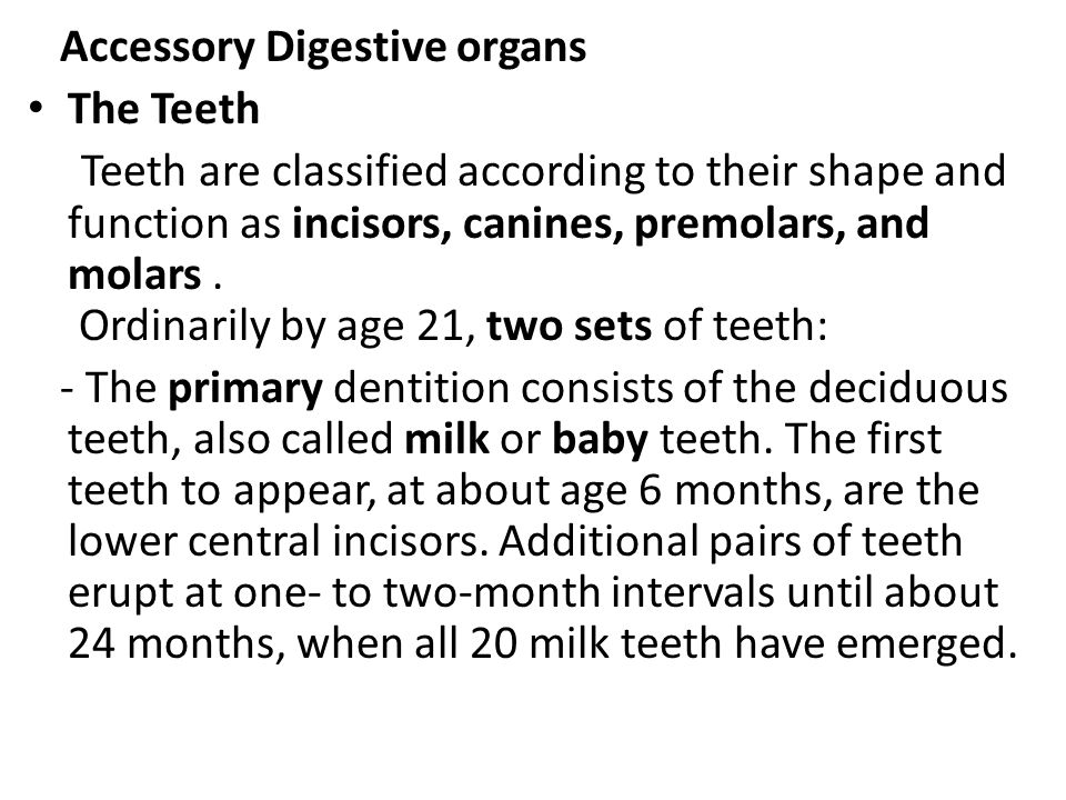 Accessory Digestive organs The Teeth Teeth are classified according to their shape and function as incisors, canines, premolars, and molars. Ordinaril