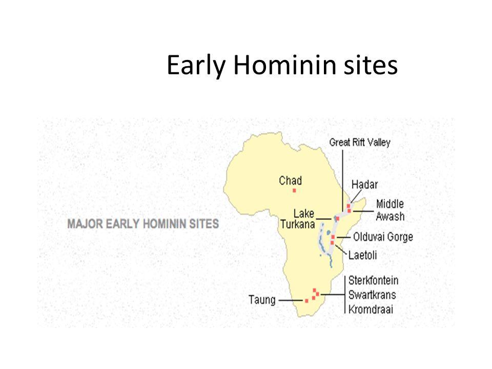 Early Hominin sites
