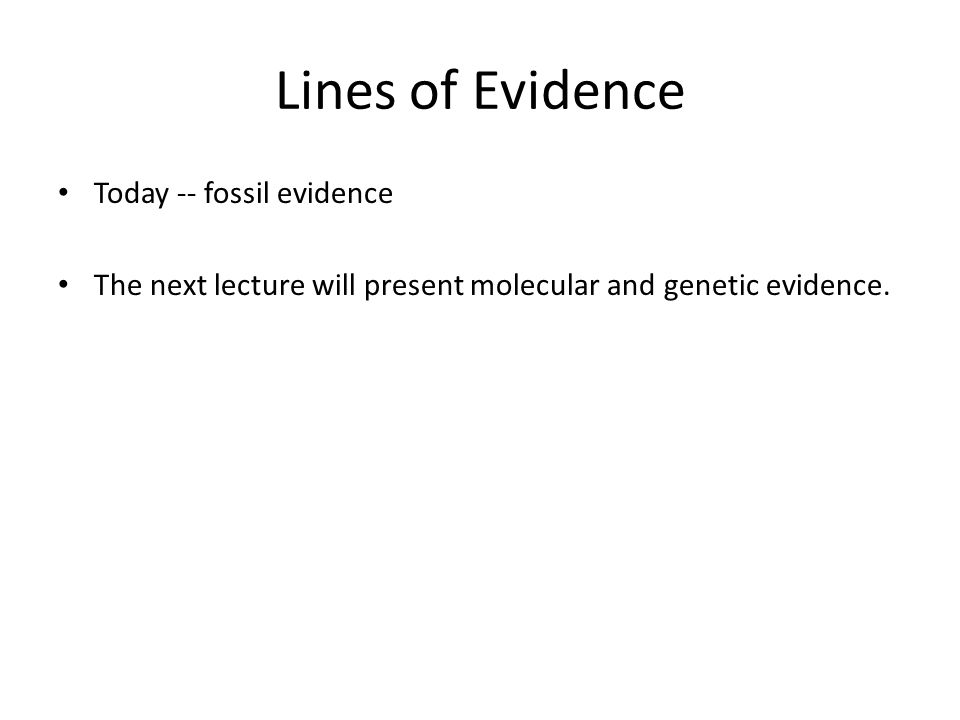 Lines of Evidence Today -- fossil evidence The next lecture will present molecular and genetic evidence.