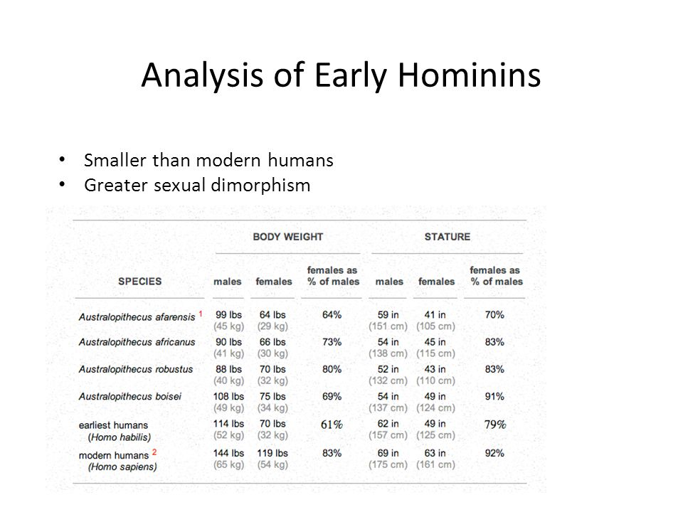 Analysis of Early Hominins Smaller than modern humans Greater sexual dimorphism