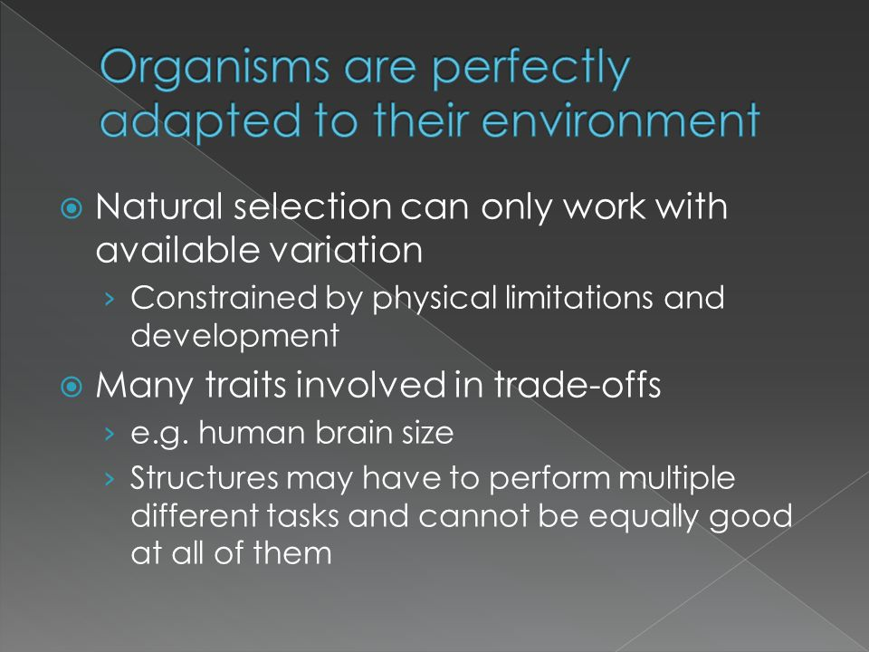 Natural selection can only work with available variation Constrained by physical limitations and development Many traits involved in trade-offs e.g. h