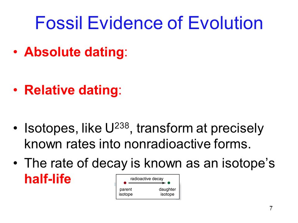7 Absolute dating: Relative dating: Isotopes, like U 238, transform at precisely known rates into nonradioactive forms. The rate of decay is known as