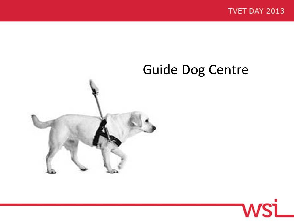 Guide Dog Centre