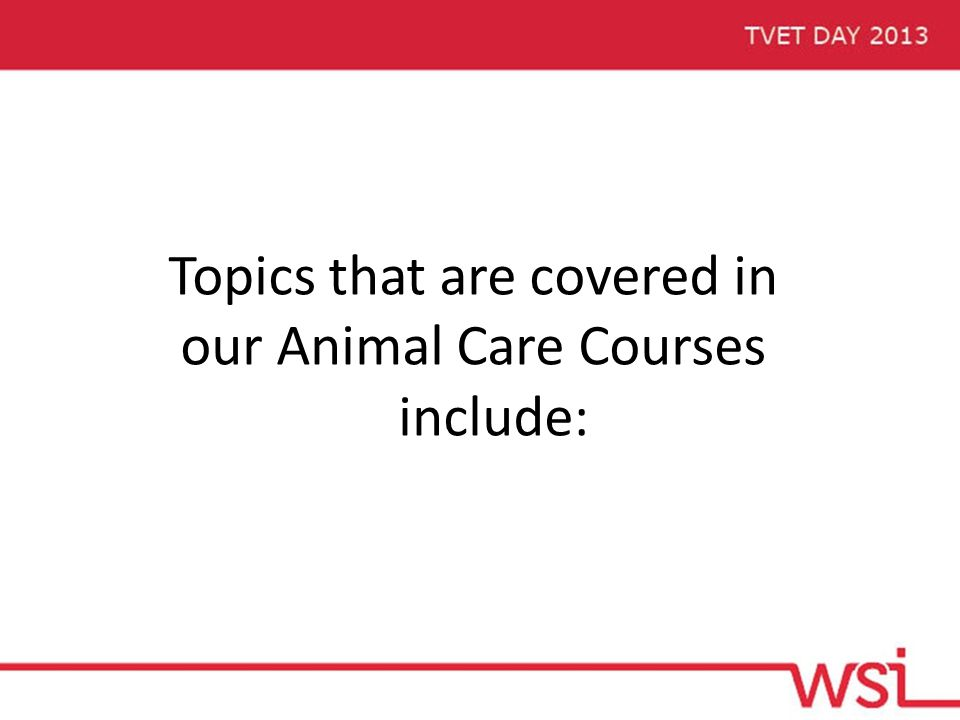 Topics that are covered in our Animal Care Courses include:
