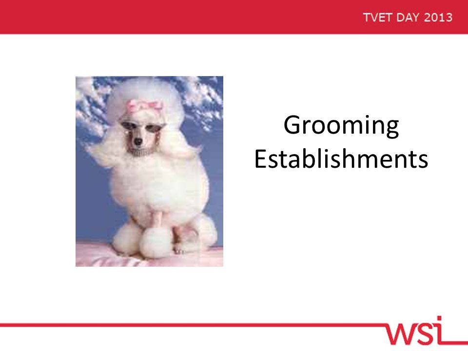 Grooming Establishments