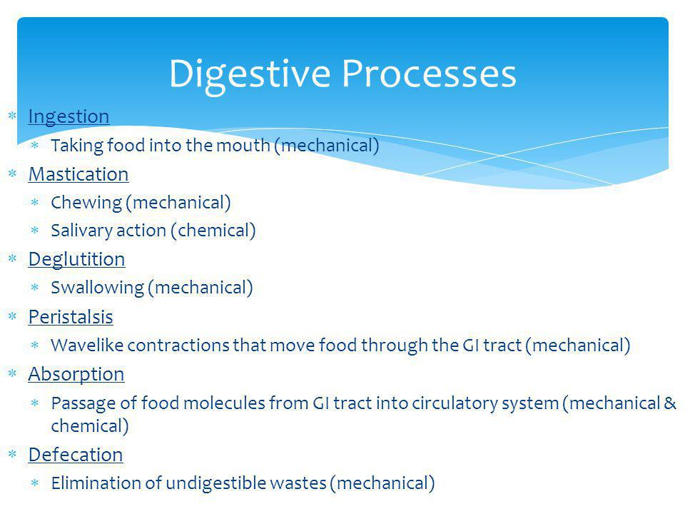 SPECIAL FEATURES OF THE DIGESTIVE SYSTEM