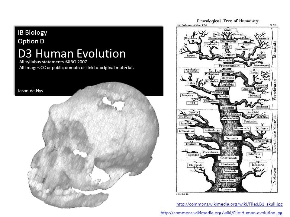 IB Biology Option D D3 Human Evolution Jason de Nys IB Biology Option D D3 Human Evolution Jason de Nys All syllabus statements ©IBO 2007 All images C