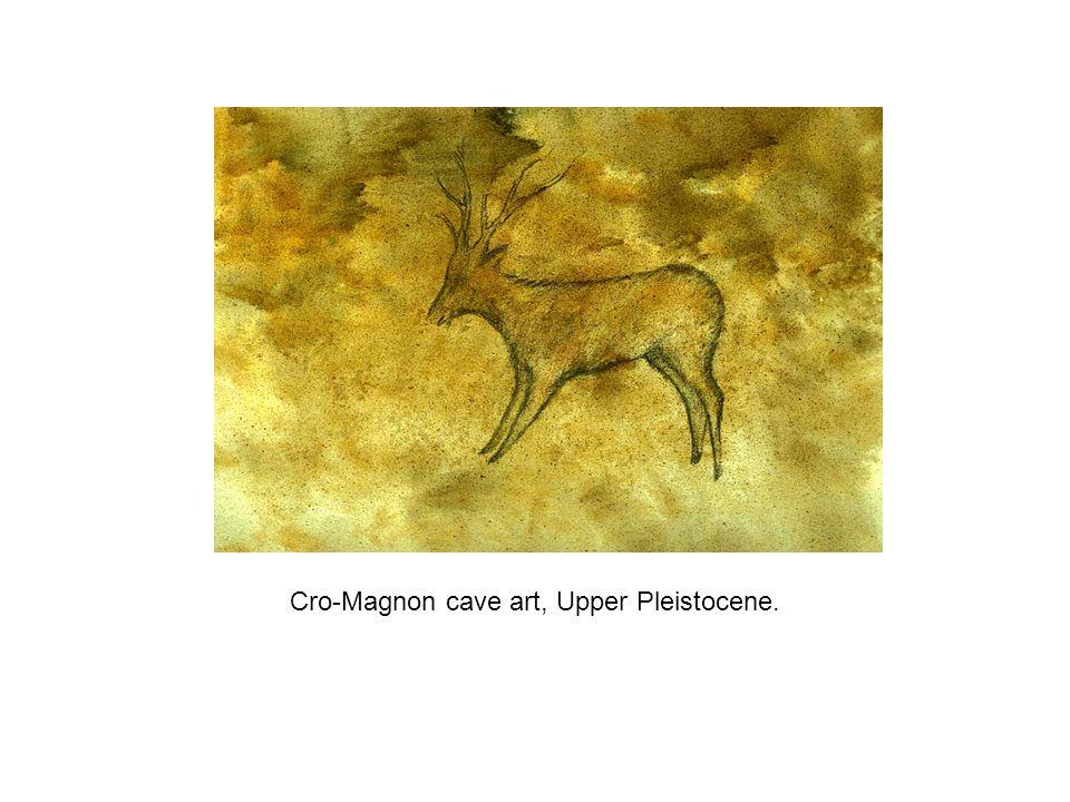 Cro-Magnon cave art, Upper Pleistocene.