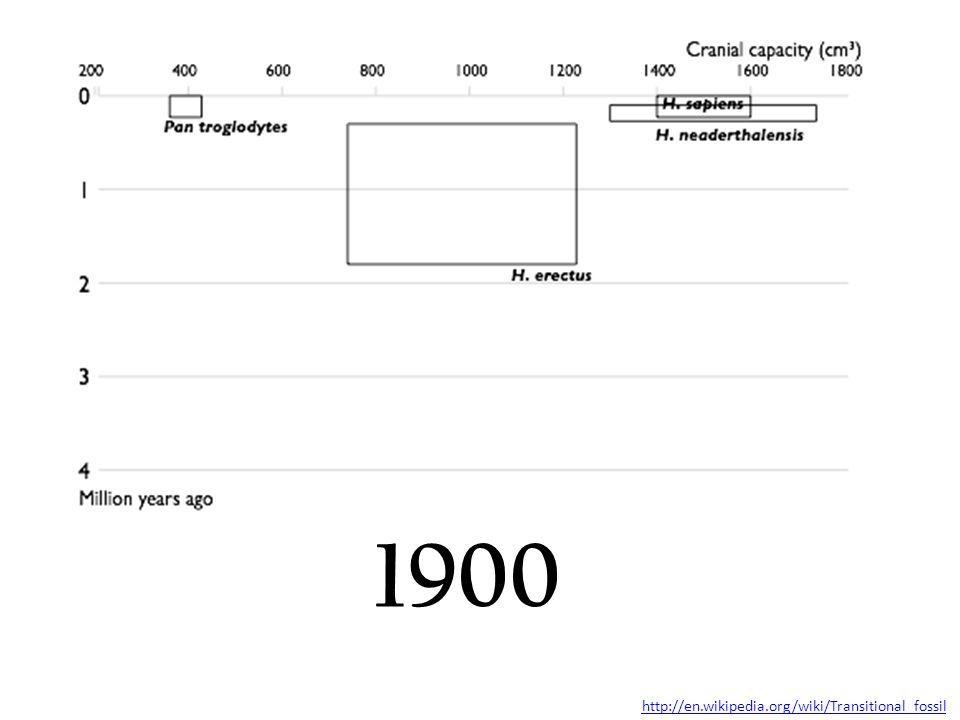 1900 http://en.wikipedia.org/wiki/Transitional_fossil