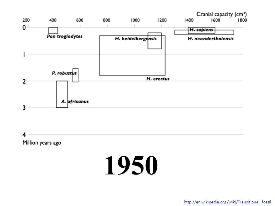 1950 http://en.wikipedia.org/wiki/Transitional_fossil