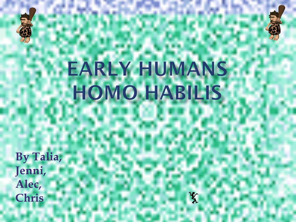 The Homo Habilis lived at the time period of two million B.C.
