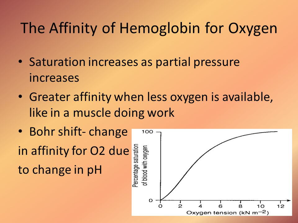 The Affinity of Hemoglobin for Oxygen Saturation increases as partial pressure increases Greater affinity when less oxygen is available, like in a mus