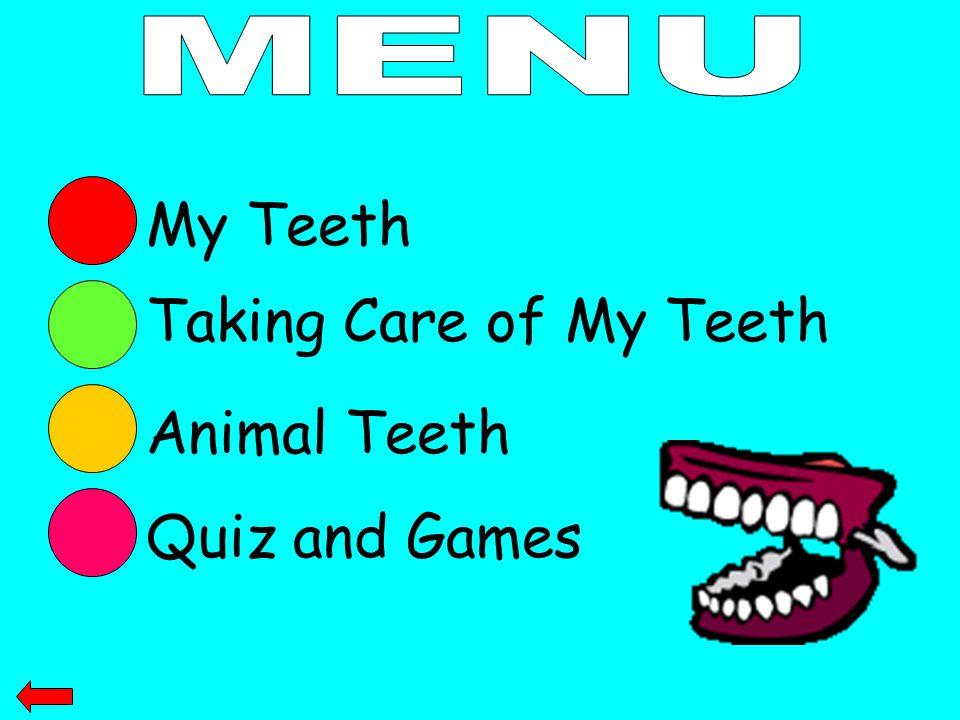 My Teeth Taking Care of My Teeth Animal Teeth Quiz and Games