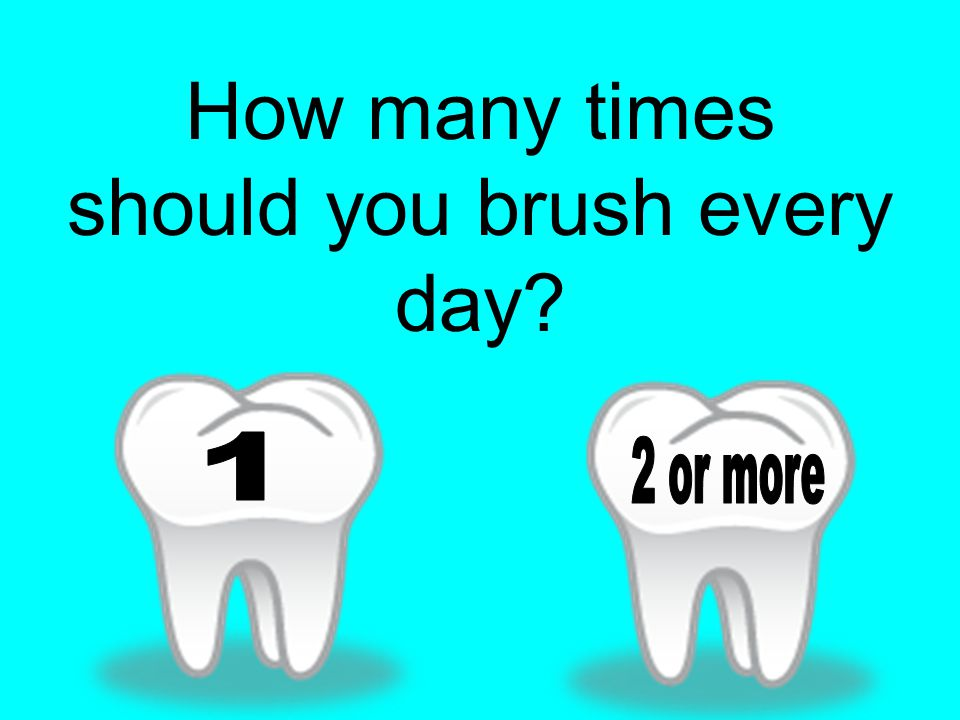 How many times should you brush every day?