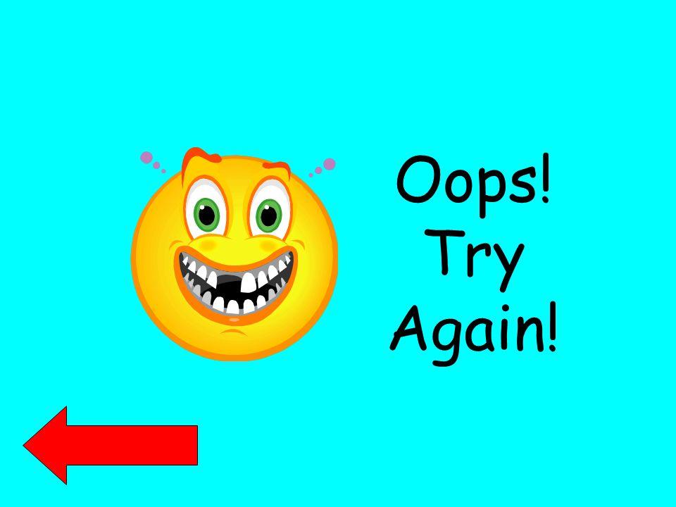 Oops! Try Again!
