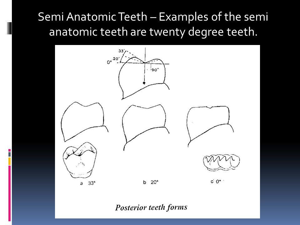 Semi Anatomic Teeth – Examples of the semi anatomic teeth are twenty degree teeth.