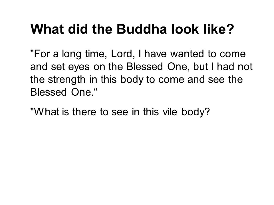 What did the Buddha look like.