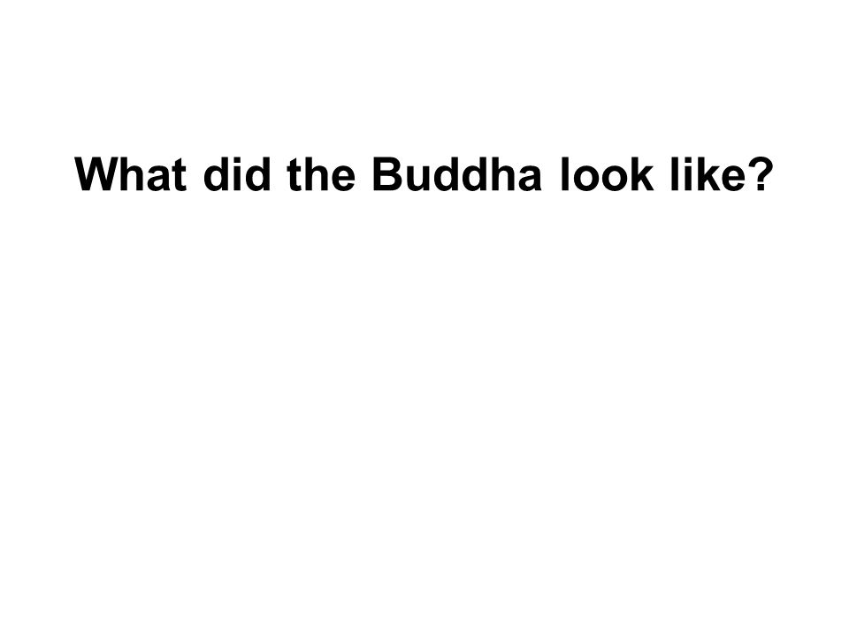 What did the Buddha look like It doesnt really matter. What matters is the Dhamma!
