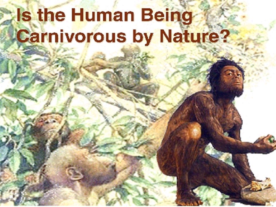 Conditions were so difficult that many species, animals and plants, disappeared..