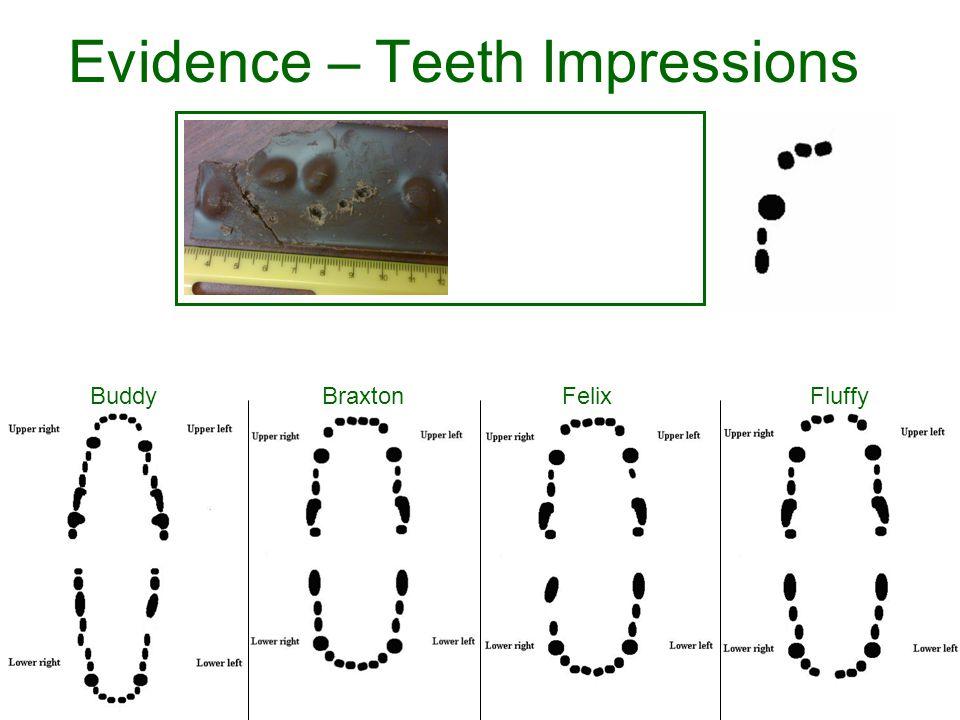 Evidence – Teeth Impressions BraxtonBuddyFelixFluffy