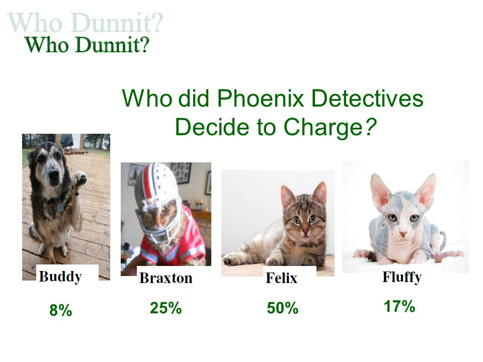 Who did Phoenix Detectives Decide to Charge? 25%50% 17% 8%