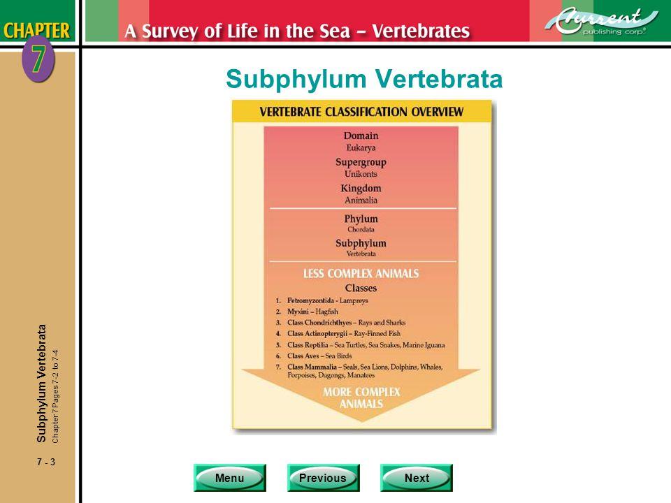 MenuPreviousNext 7 - 3 Subphylum Vertebrata Chapter 7 Pages 7-2 to 7-4