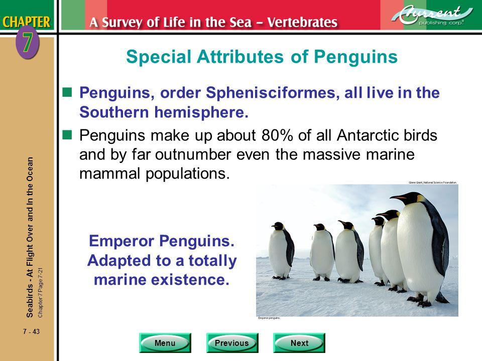 MenuPreviousNext 7 - 43 Special Attributes of Penguins nPenguins, order Sphenisciformes, all live in the Southern hemisphere. nPenguins make up about