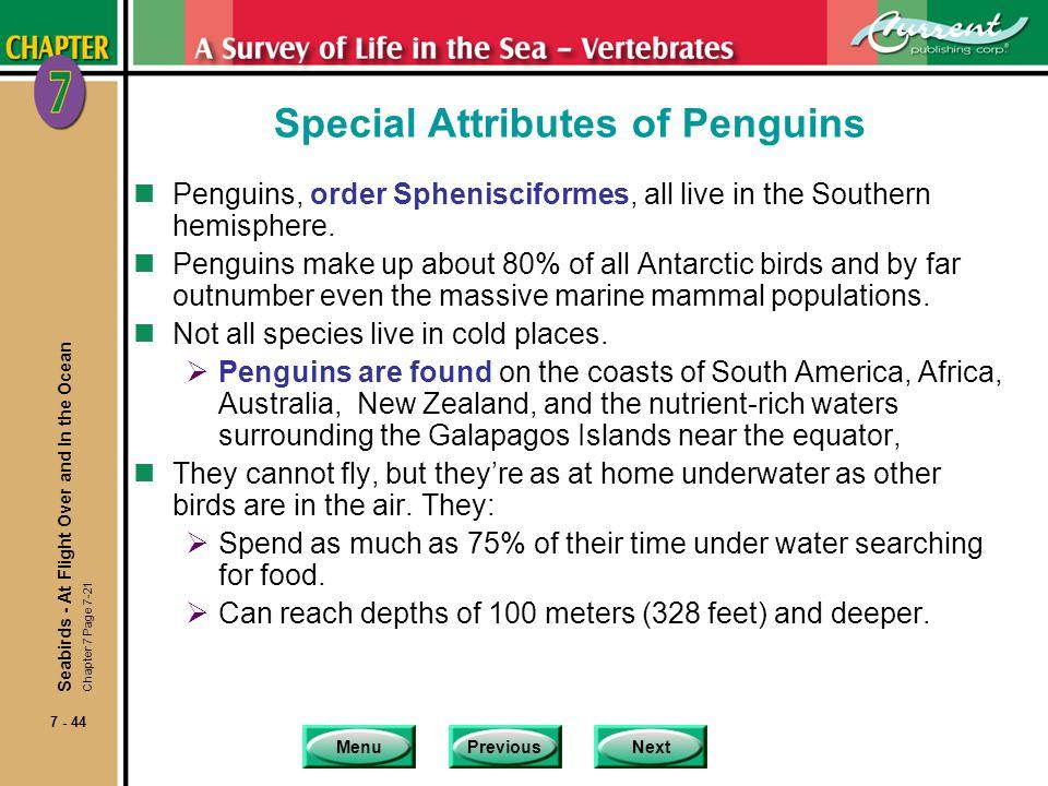 MenuPreviousNext 7 - 44 Special Attributes of Penguins nPenguins, order Sphenisciformes, all live in the Southern hemisphere. nPenguins make up about