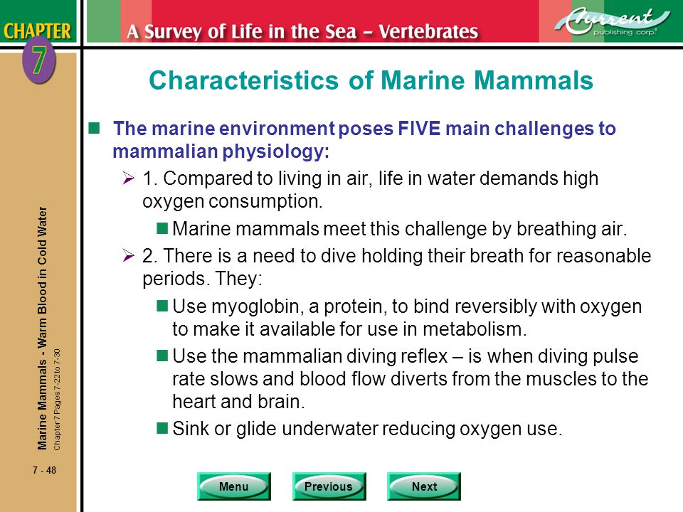 MenuPreviousNext 7 - 48 Characteristics of Marine Mammals nThe marine environment poses FIVE main challenges to mammalian physiology: 1. Compared to l