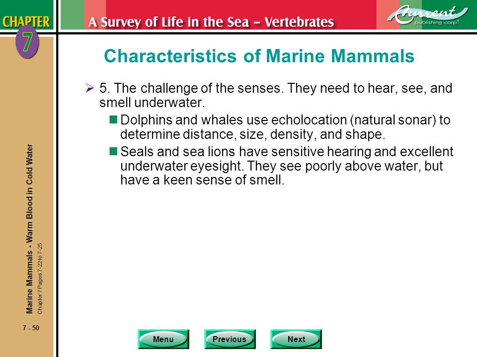 MenuPreviousNext 7 - 50 Characteristics of Marine Mammals 5. The challenge of the senses. They need to hear, see, and smell underwater. nDolphins and