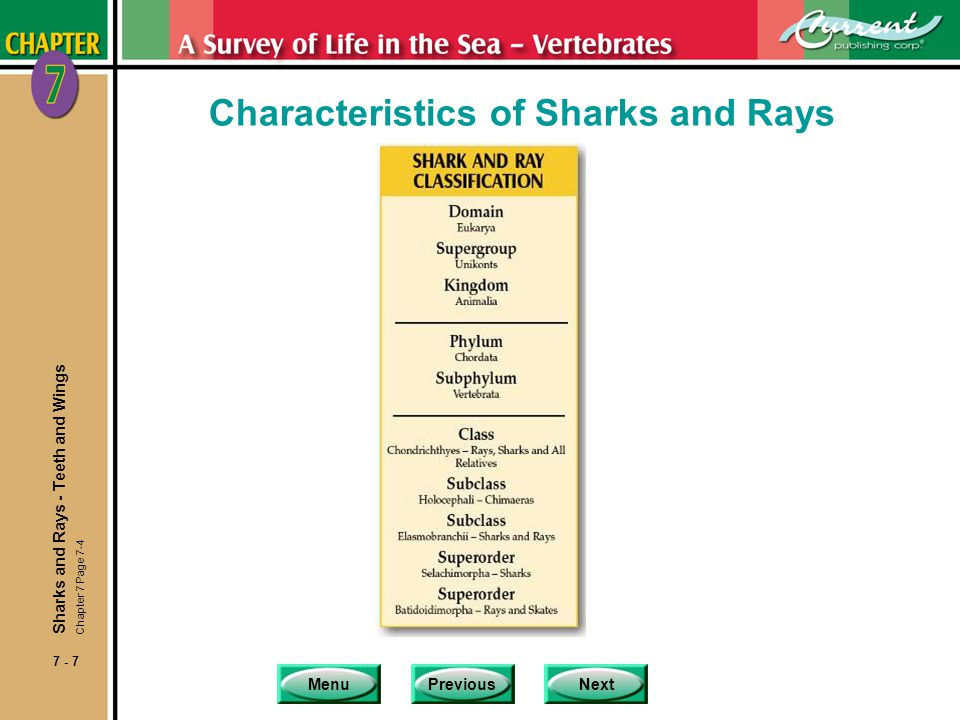 MenuPreviousNext 7 - 8 Characteristics of Sharks and Rays nClass Chondrichthyes includes sharks, rays and their close relatives.