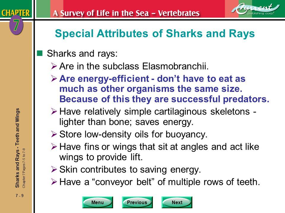 MenuPreviousNext 7 - 50 Characteristics of Marine Mammals 5.