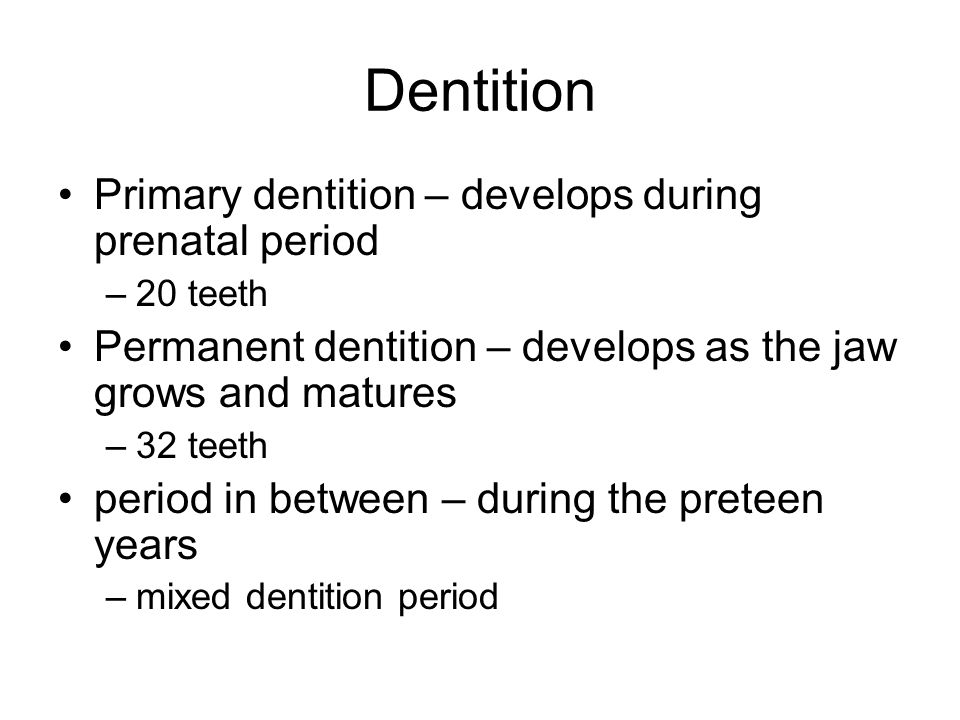 Dentition Primary dentition – develops during prenatal period –20 teeth Permanent dentition – develops as the jaw grows and matures –32 teeth period i