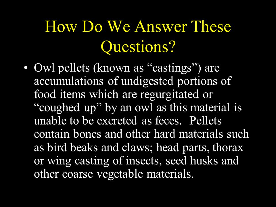 How Do We Answer These Questions.Pellets are also made up of fur and feathers.