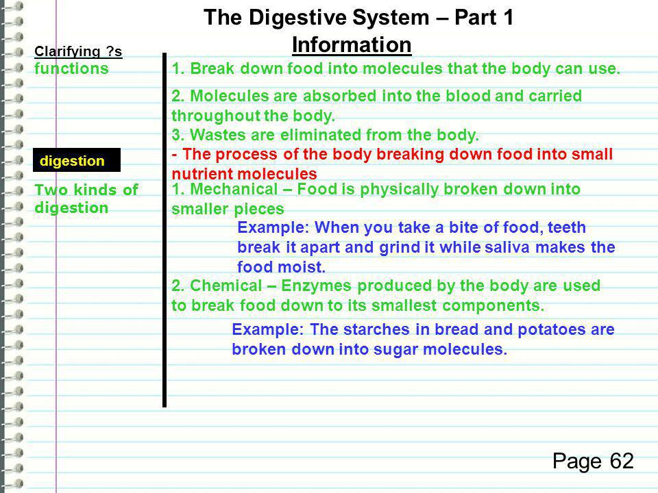Know What are the functions of the digestive system.