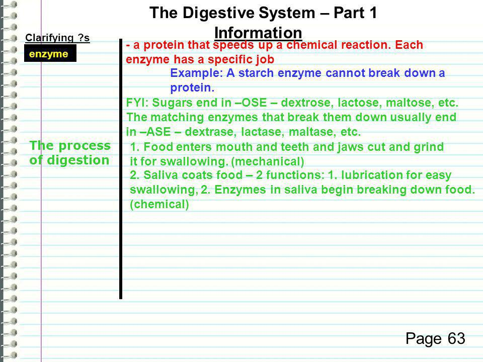 Clarifying s Information Page 62 functions 3. Wastes are eliminated from the body.