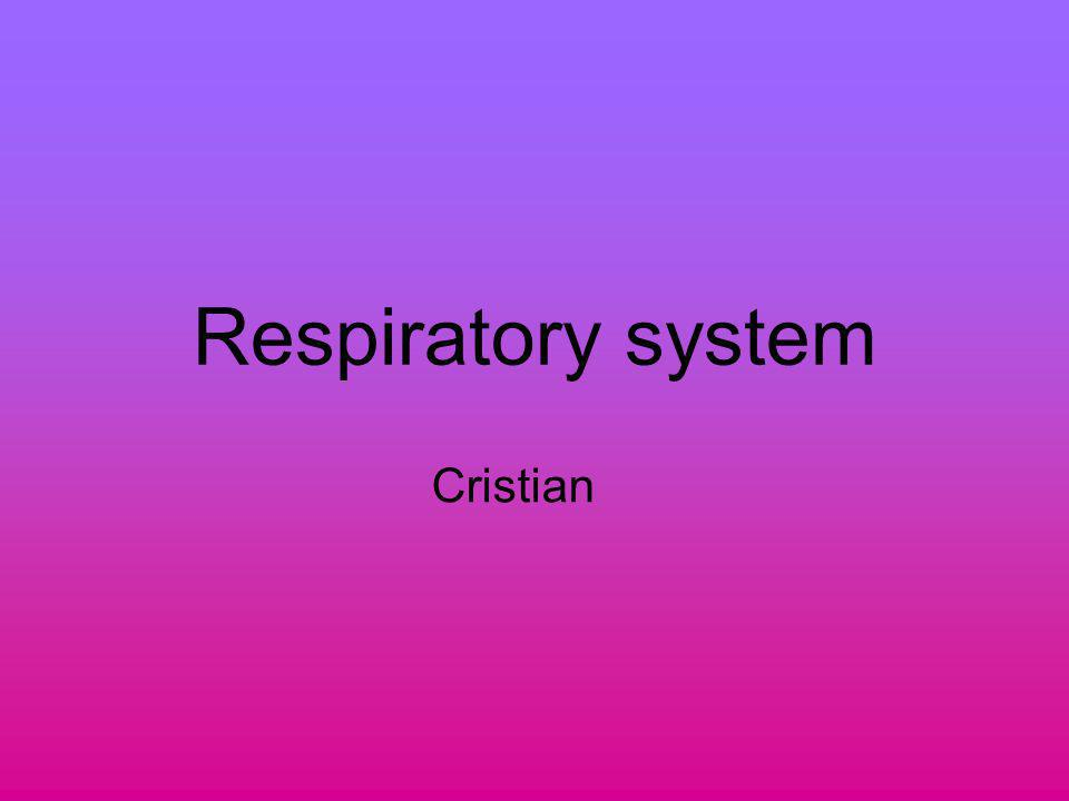 Respiratory system Cristian