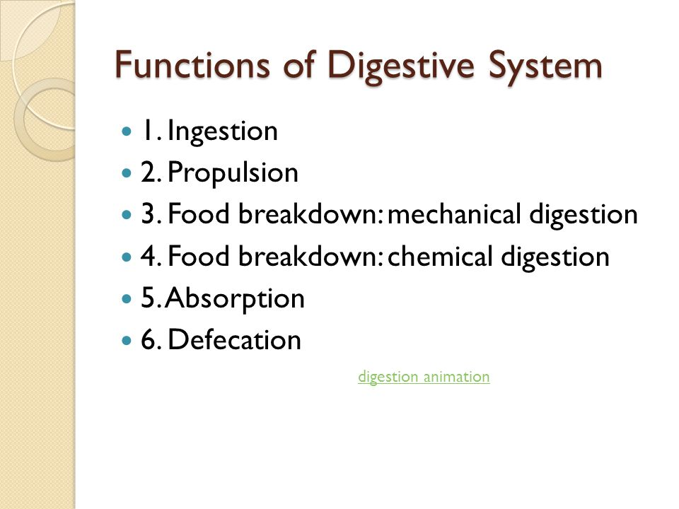 Functions of Digestive System 1. Ingestion 2. Propulsion 3. Food breakdown: mechanical digestion 4. Food breakdown: chemical digestion 5. Absorption 6