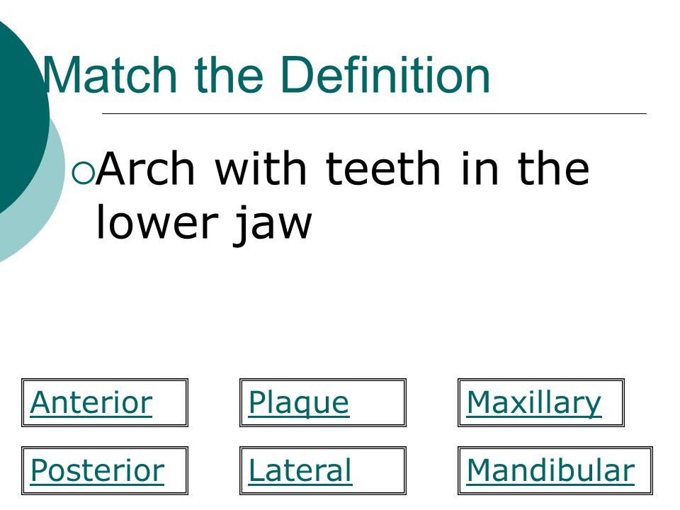 Match the Definition Arch with teeth in the lower jaw PlaqueAnteriorMaxillary MandibularPosteriorLateral