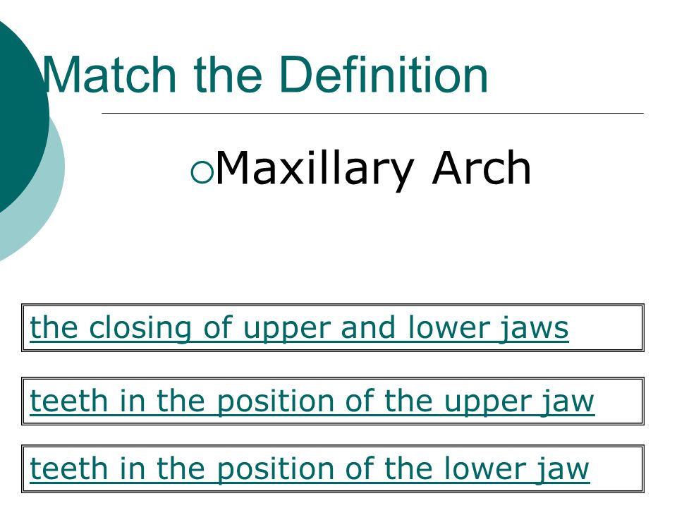 Match the Definition Maxillary Arch teeth in the position of the upper jaw teeth in the position of the lower jaw the closing of upper and lower jaws
