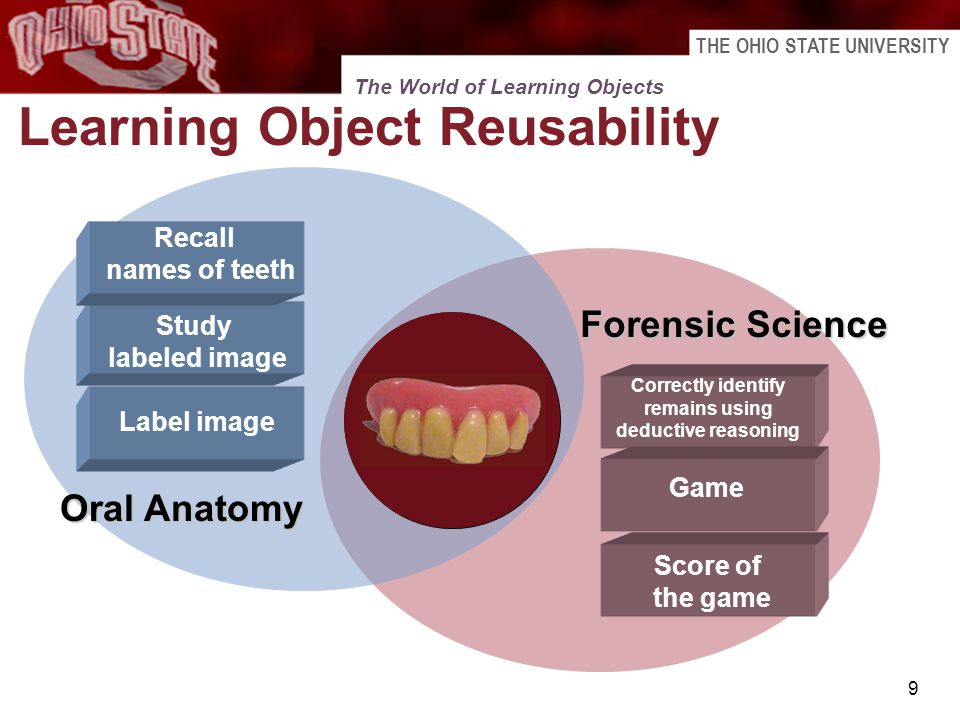 THE OHIO STATE UNIVERSITY 9 Learning Object Reusability Digital Resource Label image Correctly identify remains using deductive reasoning Oral Anatomy
