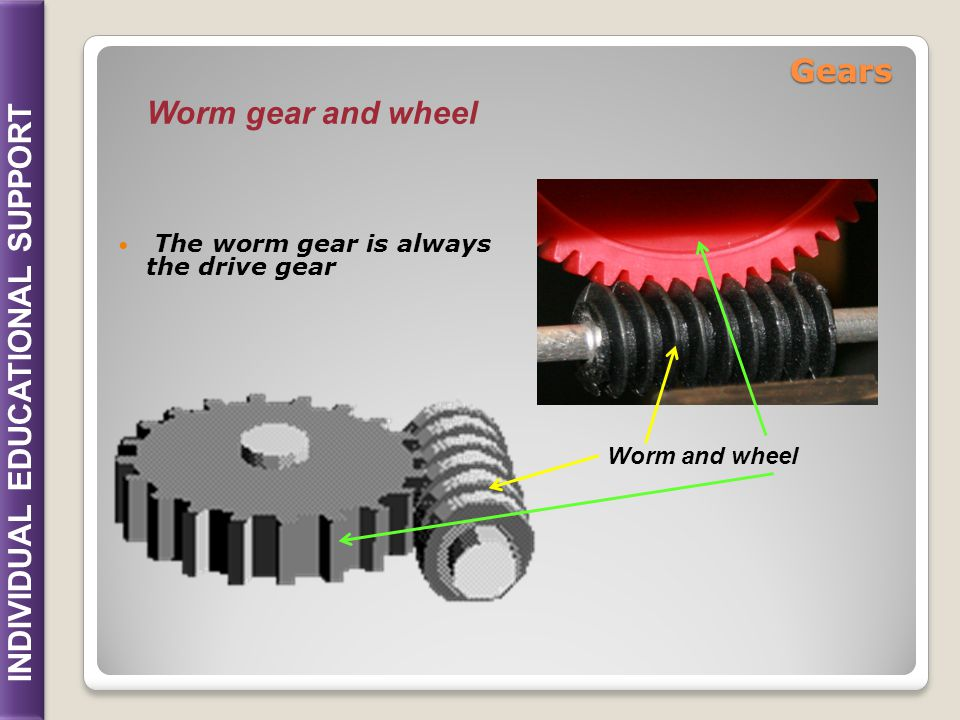 INDIVIDUAL EDUCATIONAL SUPPORT The worm gear is always the drive gear Worm and wheel Worm gear and wheel Gears