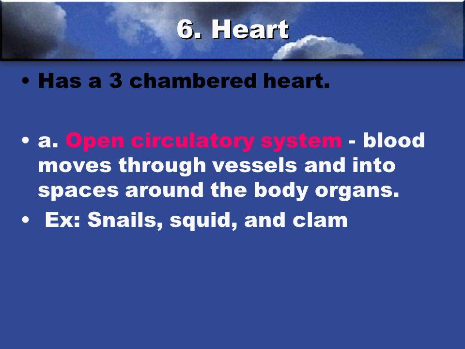 6.Heart Has a 3 chambered heart. a.