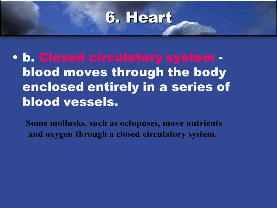 6.Heart b.